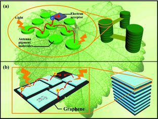71.Granum‐Like Stacking Structures with TiO2–Graphene Nanosheets for Improving Photo‐electric Conversion