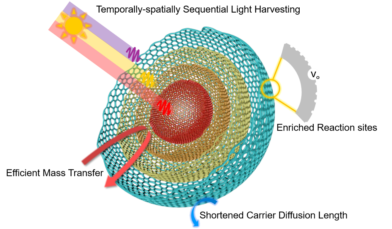 169.Efficient sequential harvesting of solar light by heterogeneous hollow shells with hierarchical pores
