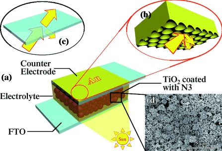 72.Enhanced Light Harvesting in Plasmonic Dye‐Sensitized Solar Cells by Using a Topologically Ordered Gold Light‐Trapping Layer