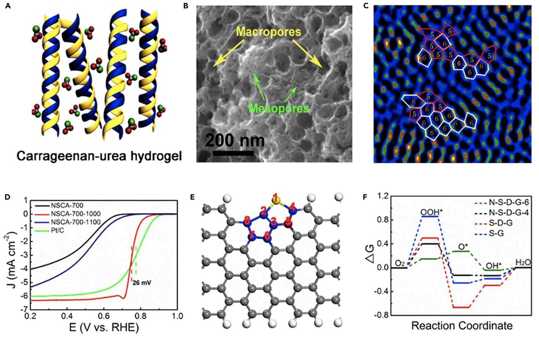 Defect Makes Perfect: Metal-free Electrocatalyst for Oxygen Reduction in Acid