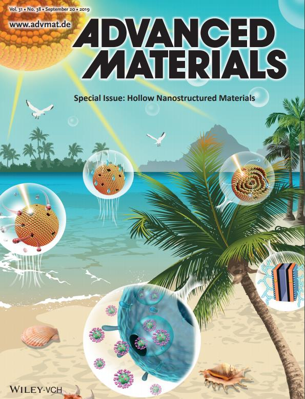 Special Issue:Hollow Nanostructured Materials,Volume 31, Issue 38, September 20, 2019 (Cover Picture )