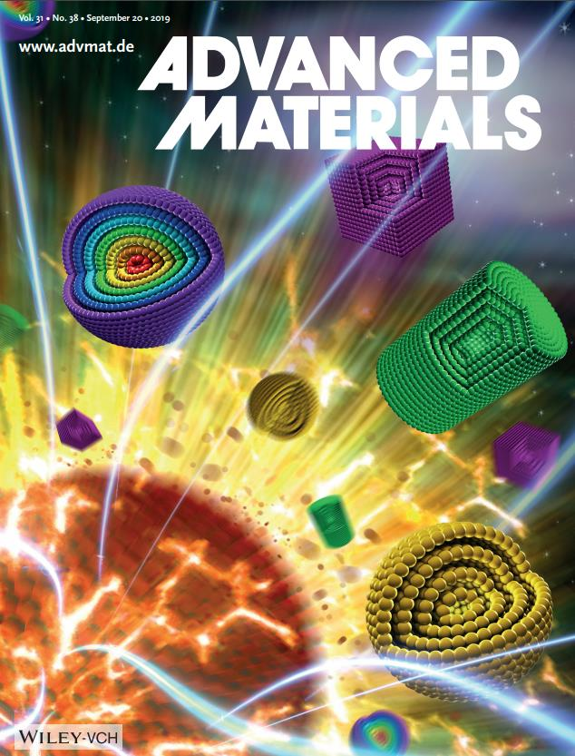 Special Issue:Hollow Nanostructured Materials,Volume 31, Issue 38, September 20, 2019 (Back Cover)